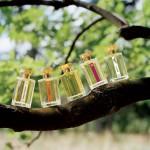 Konkurs: sztuka doboru perfum