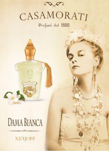 dama bianca