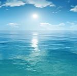 Warsztaty zapachowe: w nadmorskim słońcu
