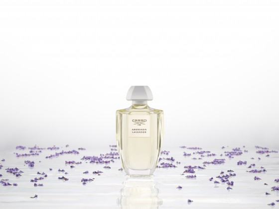 Aberdeen Lavender_wizual 40X30