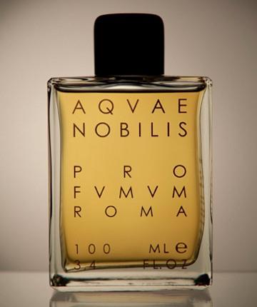 Aquae Nobils