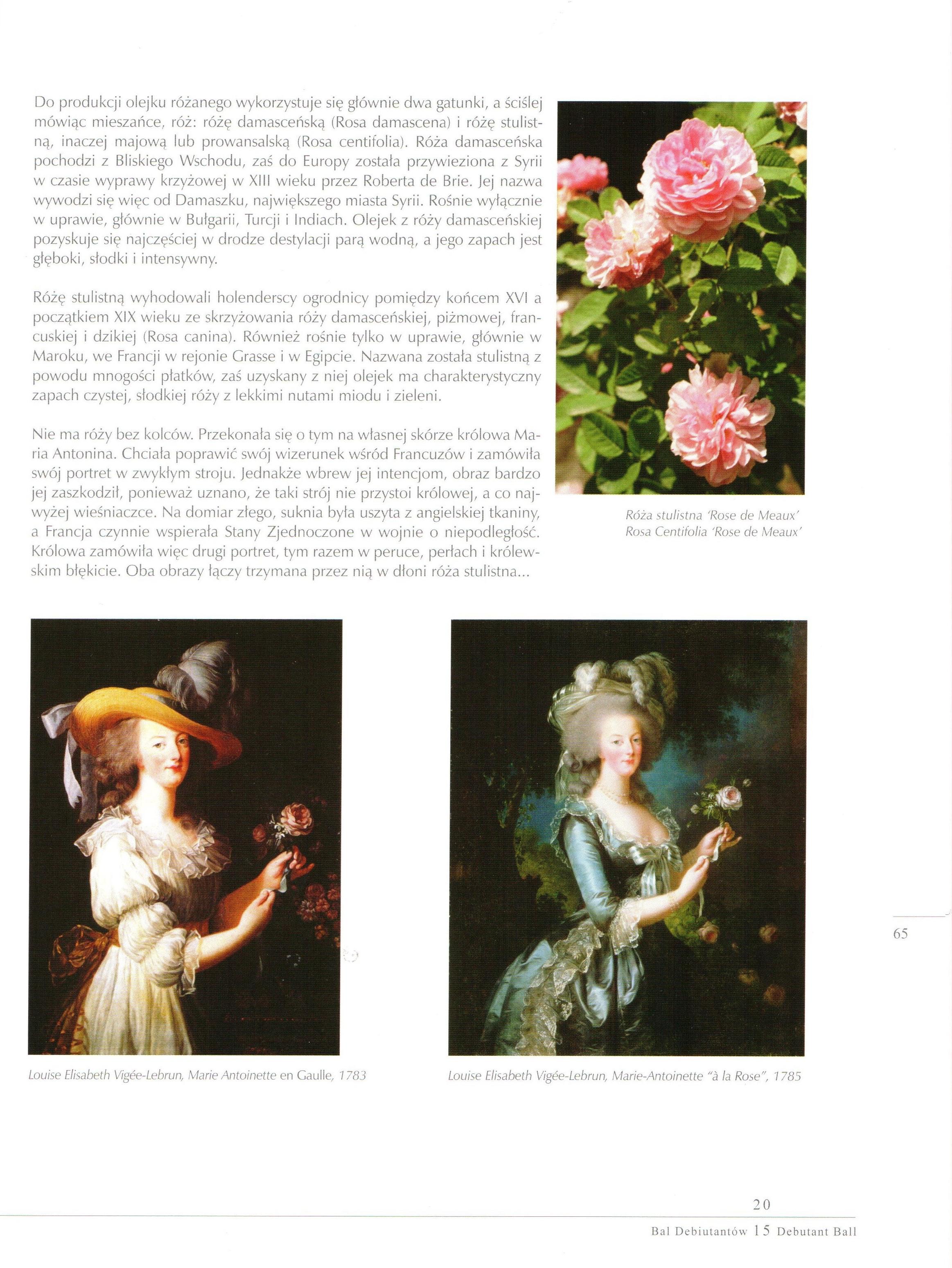 2015.09.05 Album Bal Debiutantów_Artykuł o róży (2)