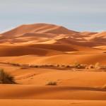 Zapach pustyni by Montale