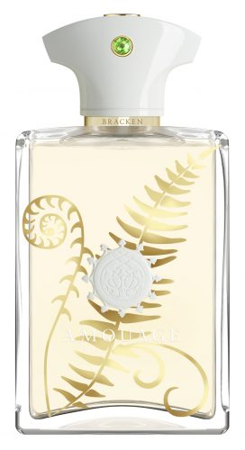 amouage-bracken-man-100ml-edp